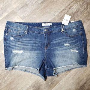 NWT Torrid Exposed Thread Cut Off Jean Shorts - 26